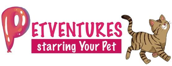 Top 10 Ways Turn your Dog into a Bitmoji – petventuresbook